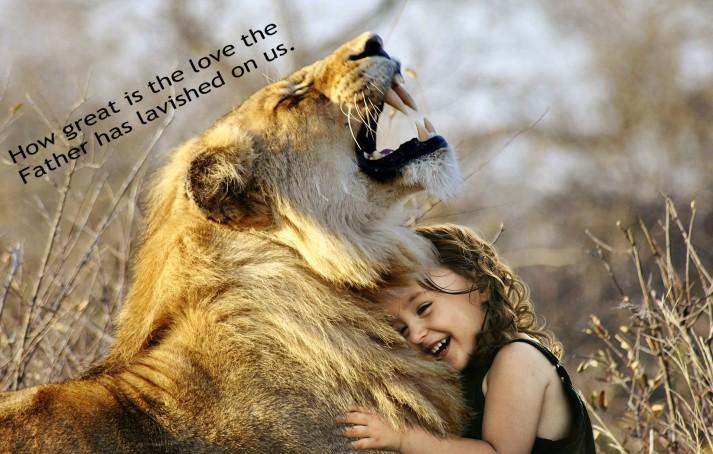 lion-3012515_1920 edit